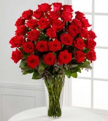 Naujos gėlės